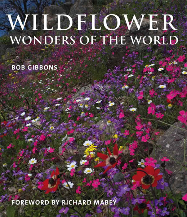 Wildflower Wonders of the World